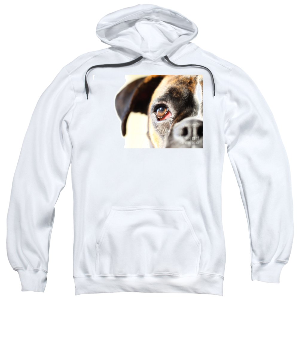 Boxer Sweatshirt featuring the photograph Boxer's Eye by Jana Behr