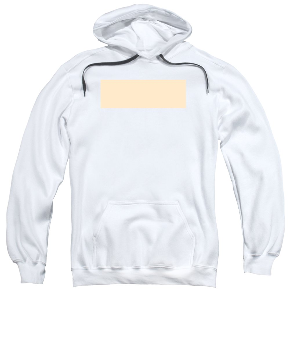 Abstract Sweatshirt featuring the digital art C.1.255-234-204.3x1 by Gareth Lewis