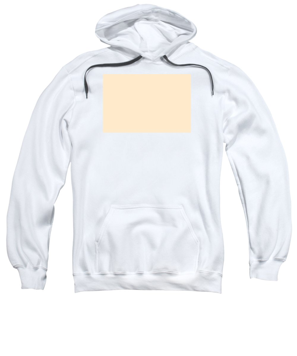 Abstract Sweatshirt featuring the digital art C.1.255-234-204.3x2 by Gareth Lewis