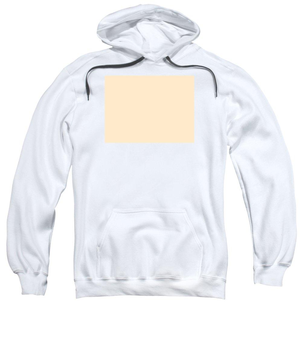 Abstract Sweatshirt featuring the digital art C.1.255-234-204.4x3 by Gareth Lewis