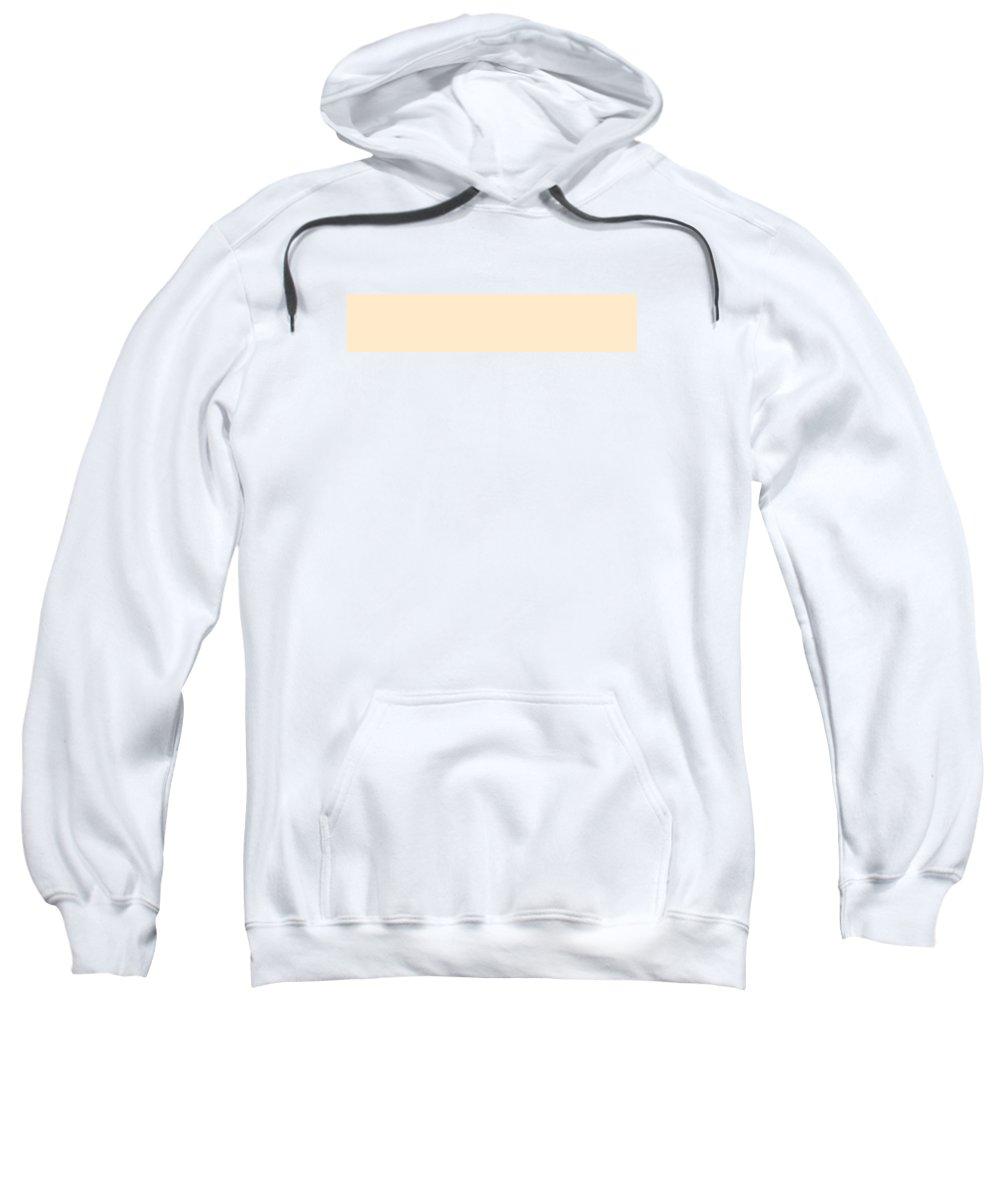 Abstract Sweatshirt featuring the digital art C.1.255-234-204.5x1 by Gareth Lewis