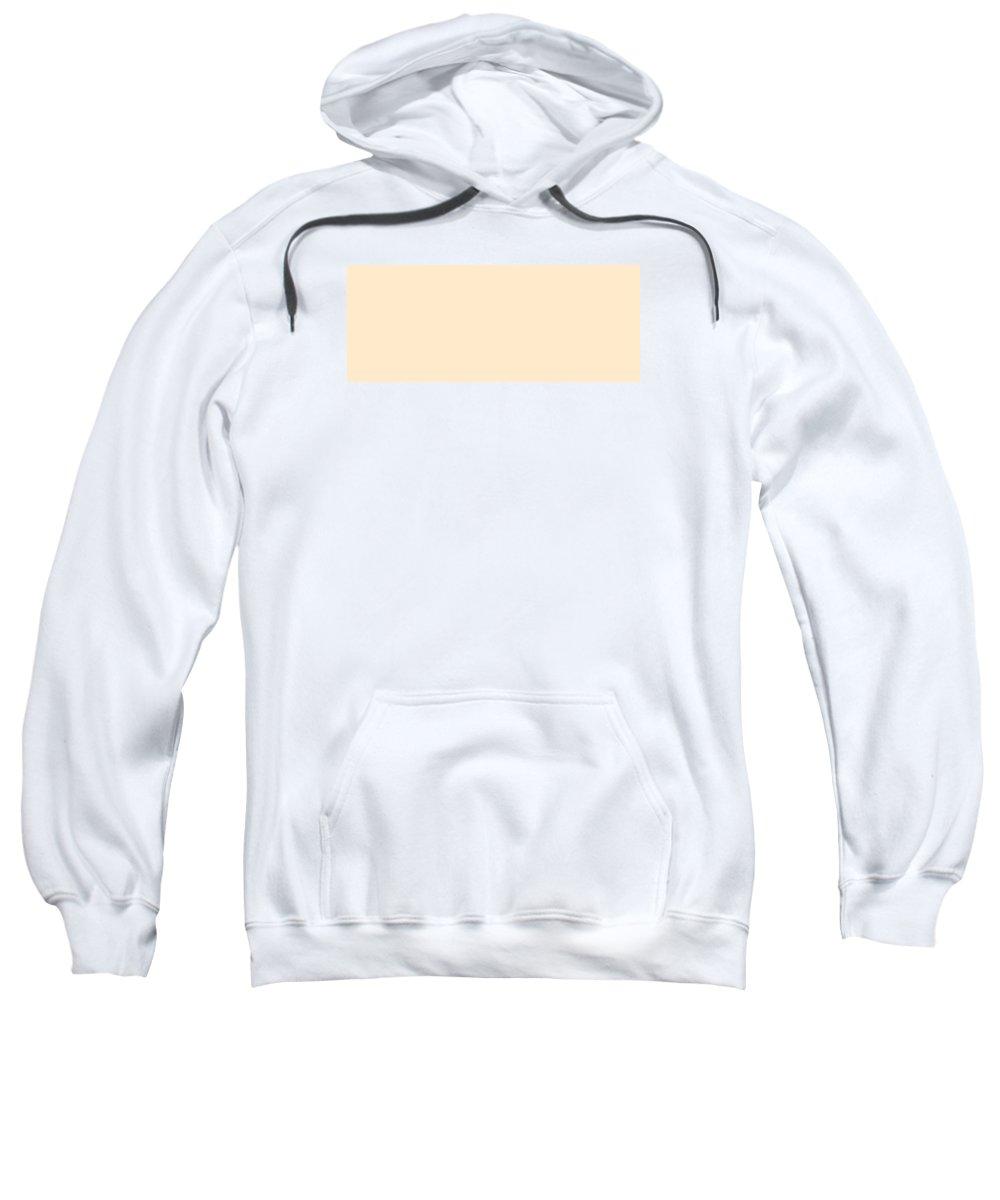 Abstract Sweatshirt featuring the digital art C.1.255-234-204.5x2 by Gareth Lewis