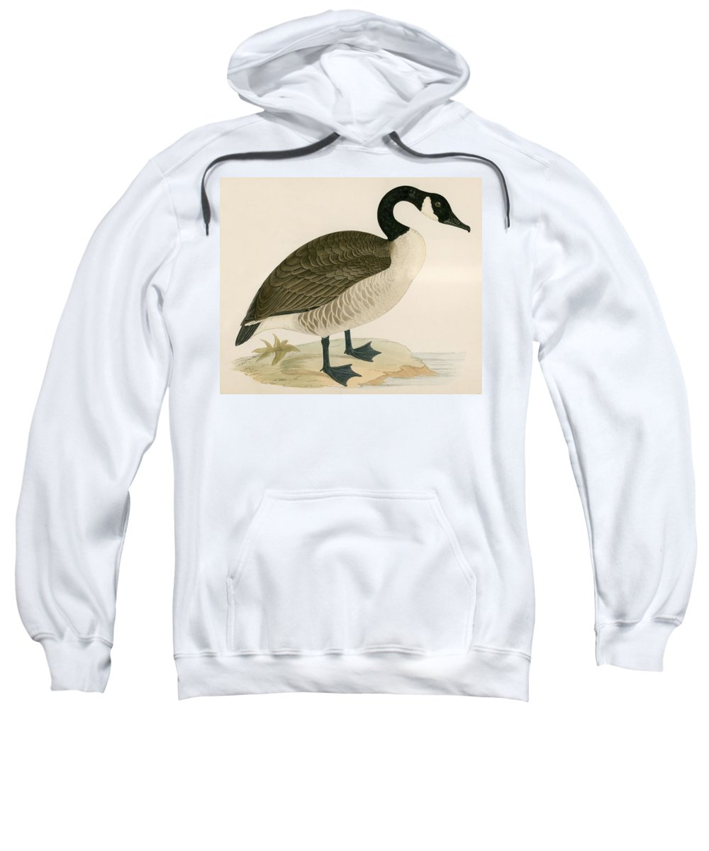 Goose Sweatshirt featuring the painting Canada Goose by Beverley R Morris