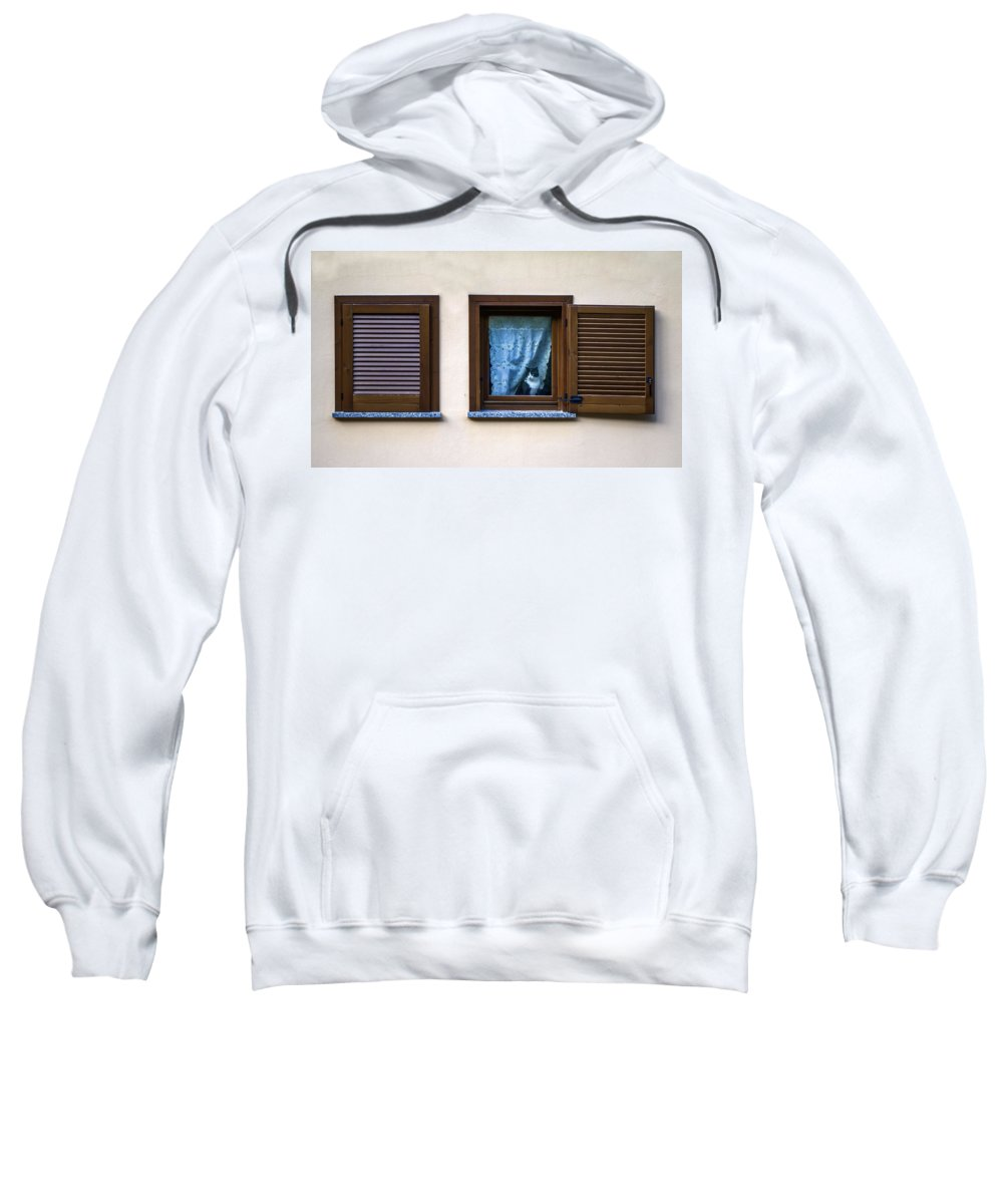 Animal Sweatshirt featuring the photograph Cat At The Window by Roberto Pagani