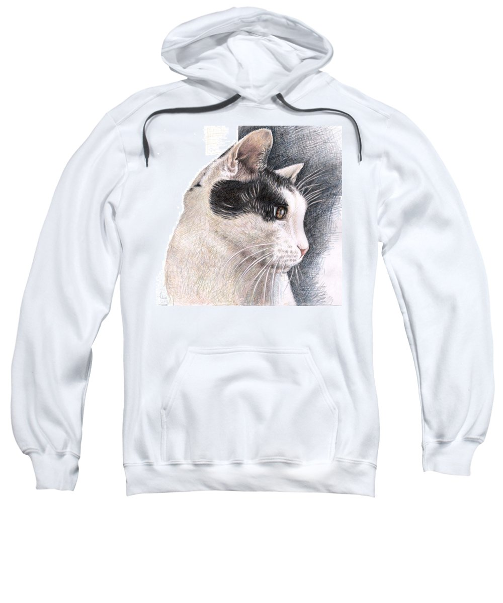 Cat Sweatshirt featuring the drawing Cats View by Nicole Zeug