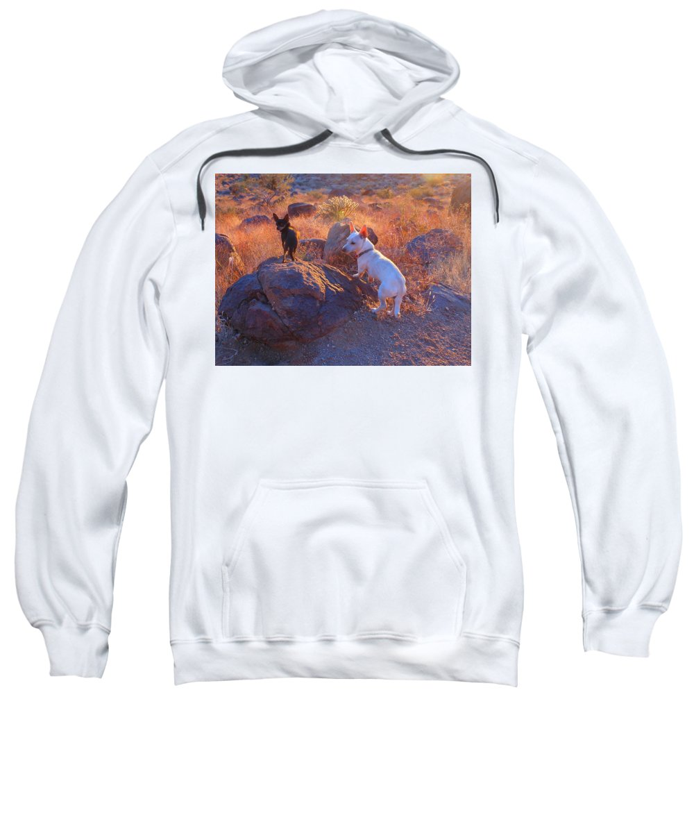 Friend Sweatshirt featuring the photograph Chico And Paco The Mountain Dogs by James Welch
