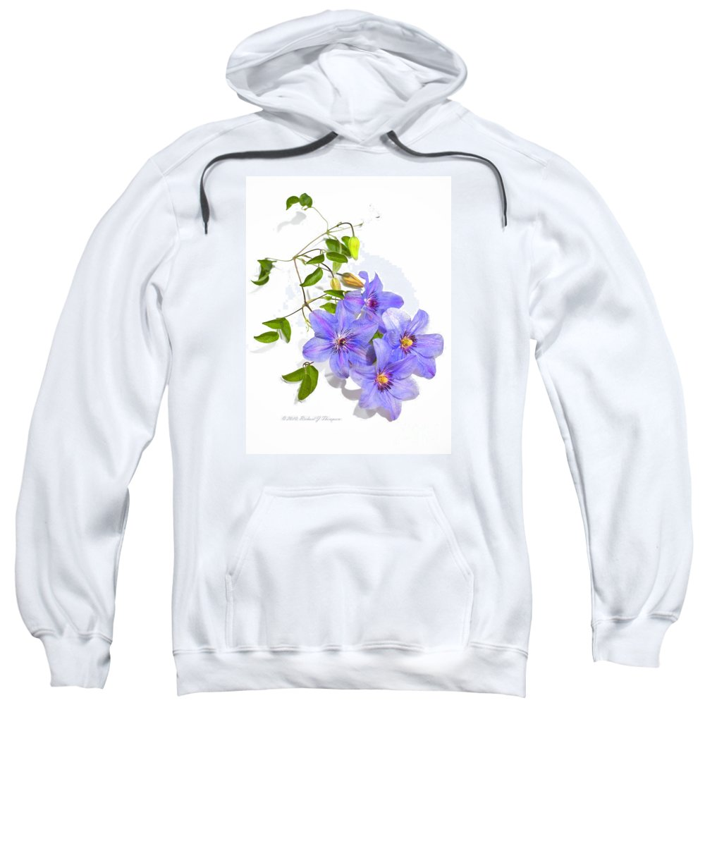 Clematis Sweatshirt featuring the photograph Clematis by Richard J Thompson