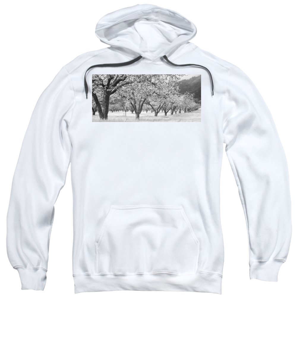Orchard Sweatshirt featuring the photograph Colorless Cherry Blossoms by Scott Campbell