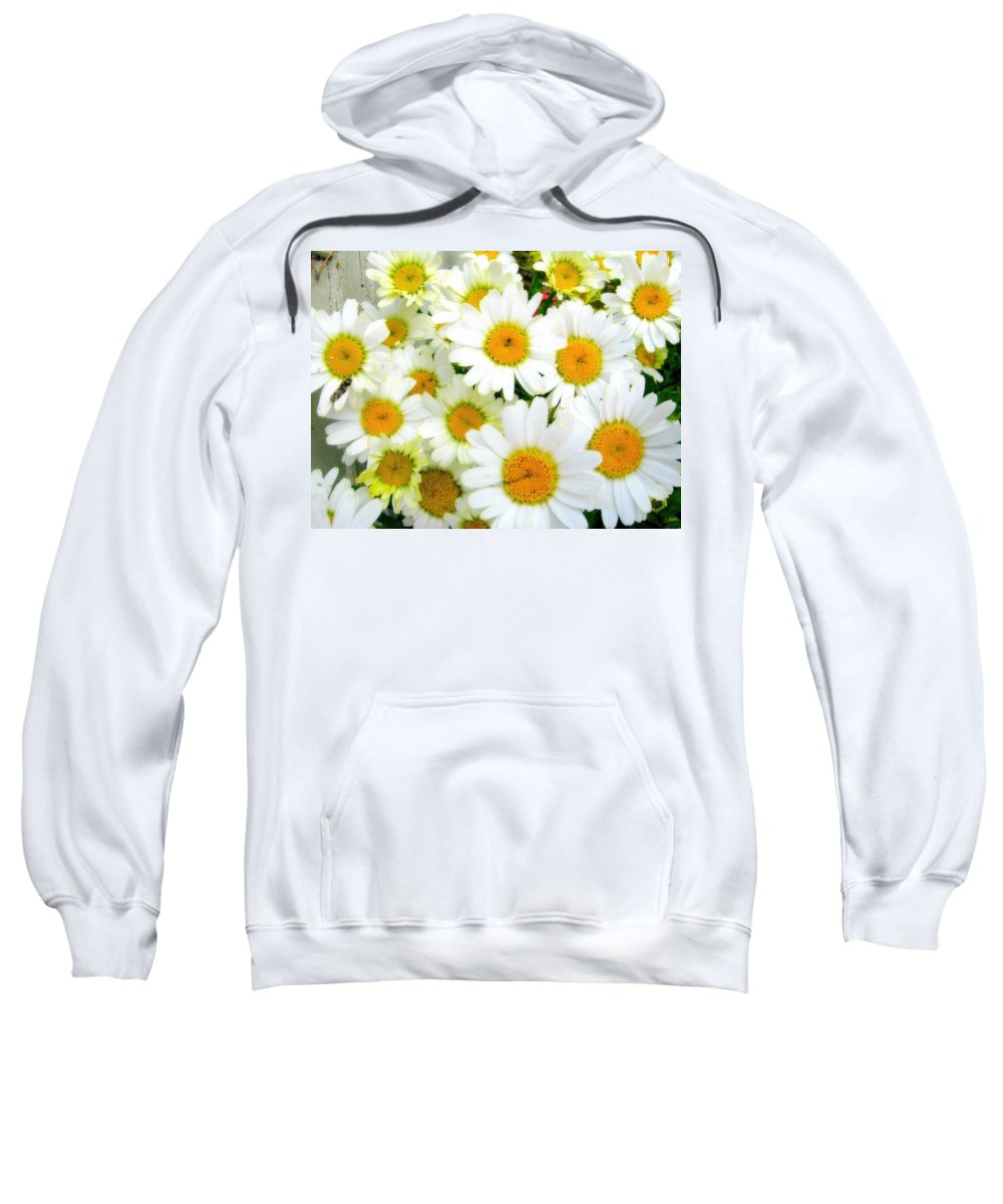Daisies Sweatshirt featuring the photograph Daisy by Amanda Stadther
