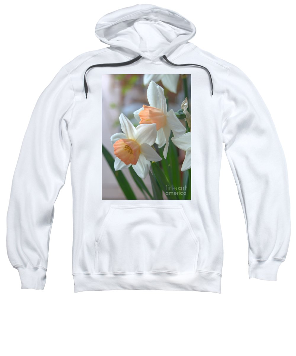 Diana Graves Photography Sweatshirt featuring the photograph Delicate Daffodils by K D Graves