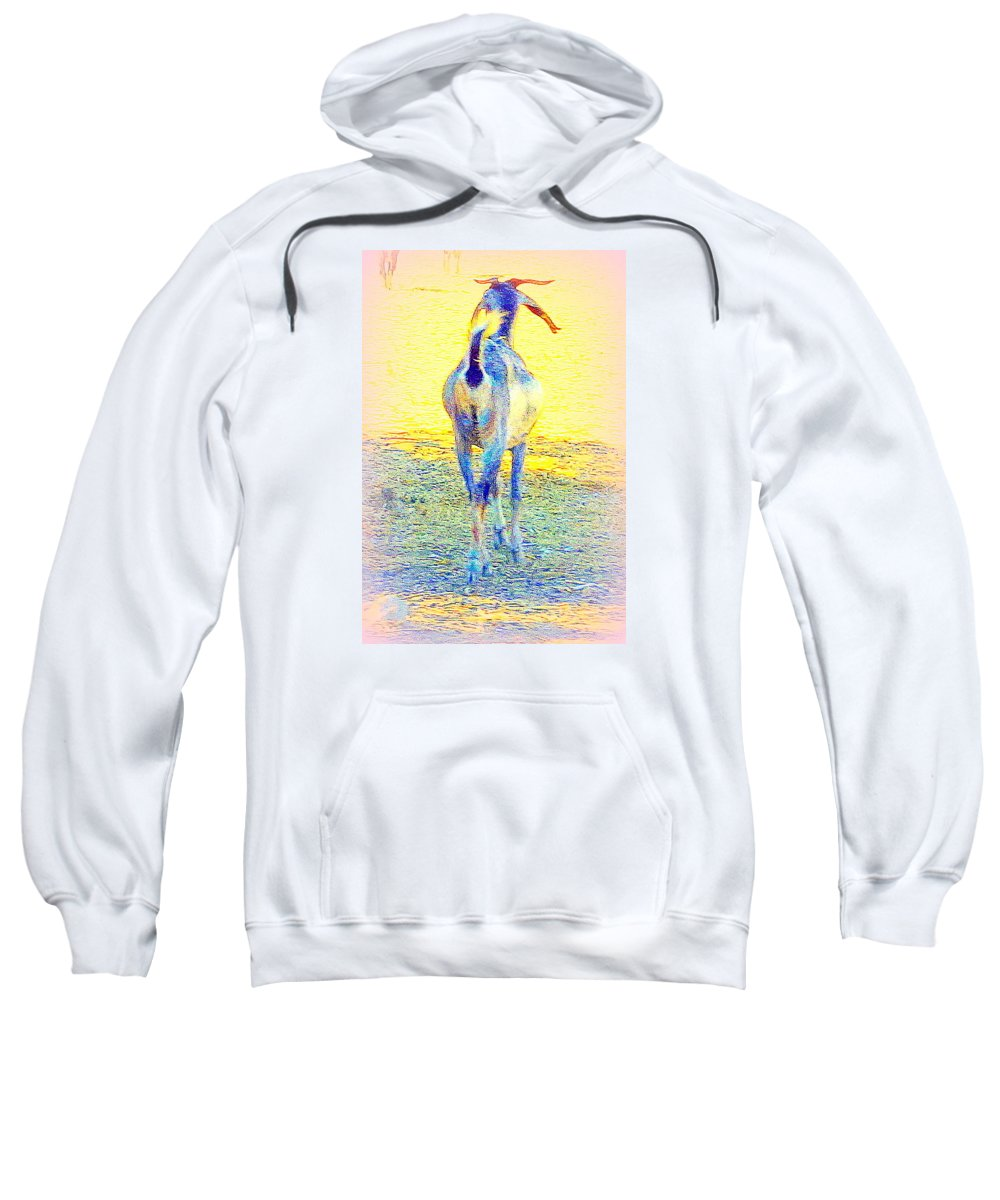 Goat Sweatshirt featuring the photograph Dont Walk Out On Me Baby, Stay With Me Forever by Hilde Widerberg