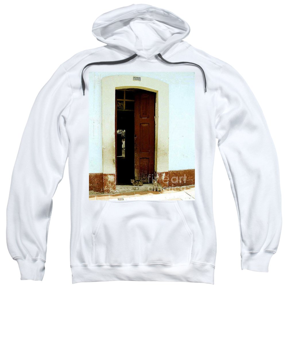 Cats Sweatshirt featuring the photograph Dos Puertas con Dos Gatos by Kathy McClure