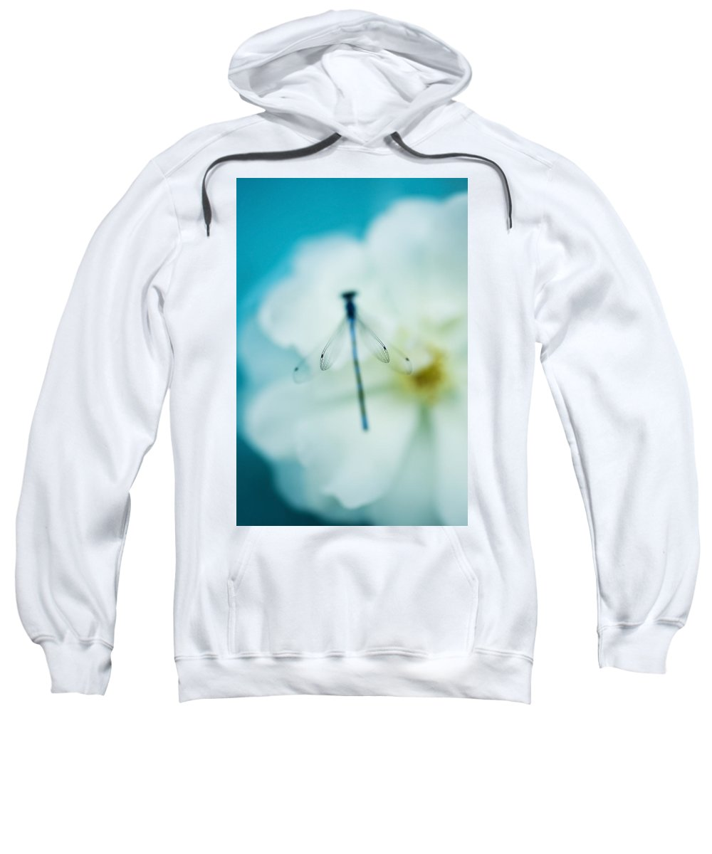 Dragonfly Sweatshirt featuring the photograph Dreamy Dragonfly Wings by Beth Riser