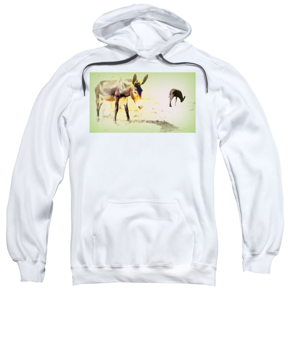 Donkey Sweatshirt featuring the photograph I Feel Totally Dried Out But I'm Not Dead Yet by Hilde Widerberg