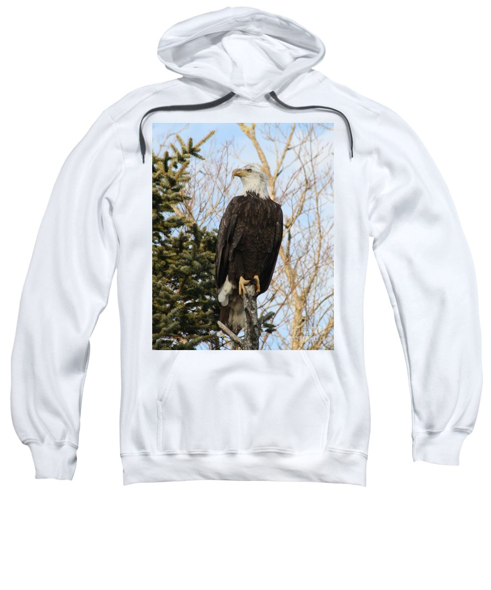 Eagle Sweatshirt featuring the photograph Eagle 1991 by Joseph Marquis