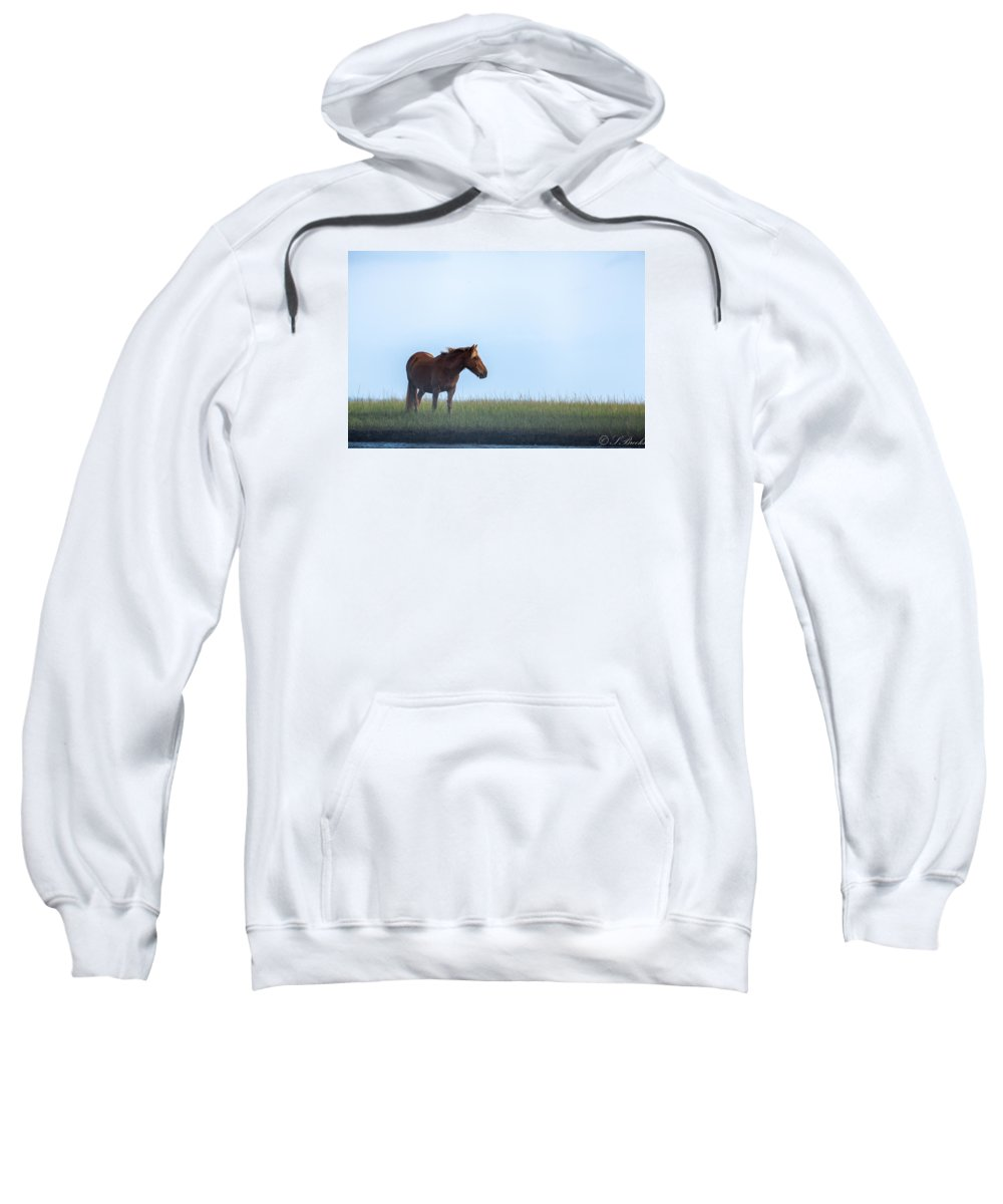Wild Sweatshirt featuring the painting Early Morning Mist by Sandy Brooks