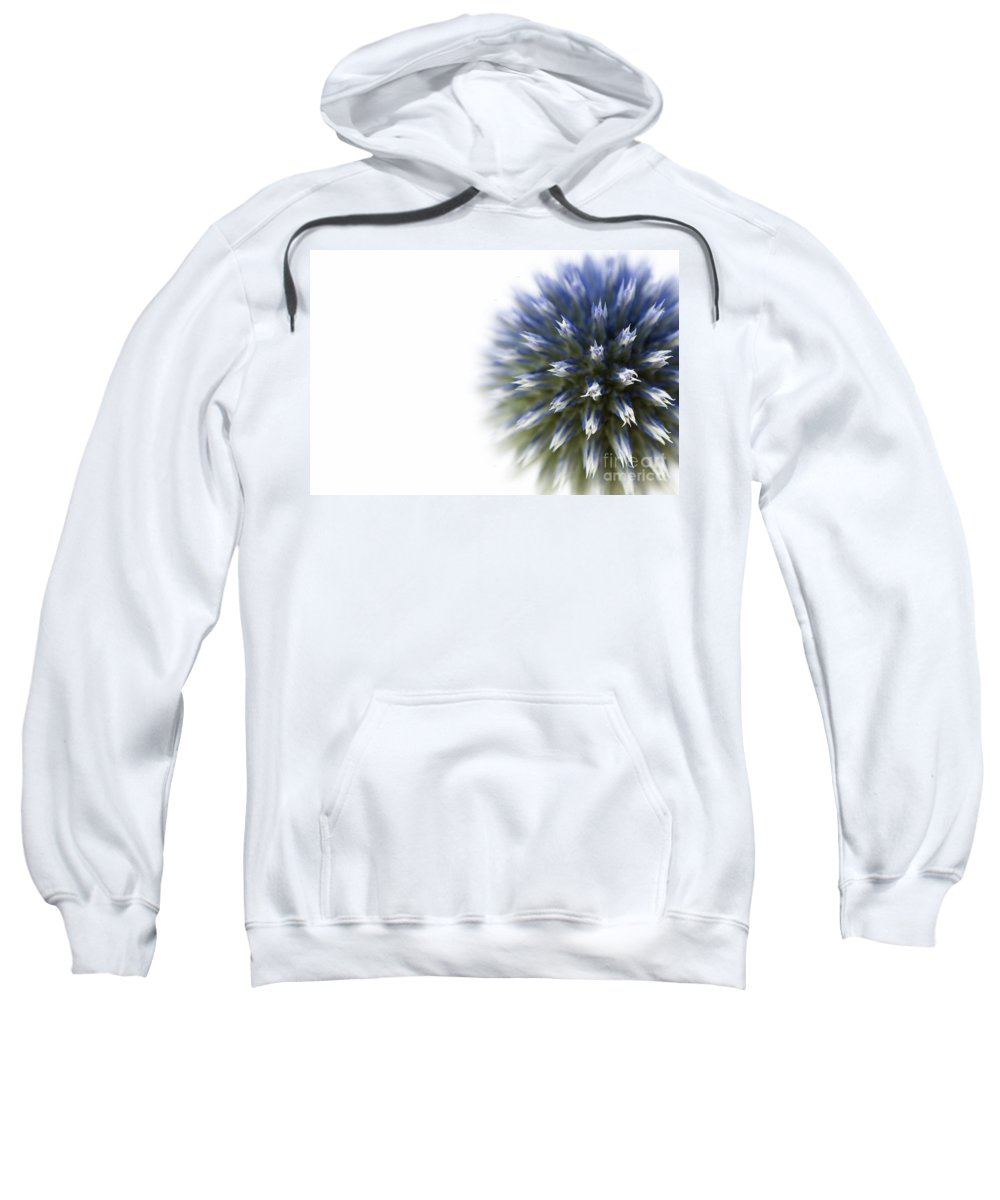 Abstract Sweatshirt featuring the photograph Echinops by Anne Gilbert