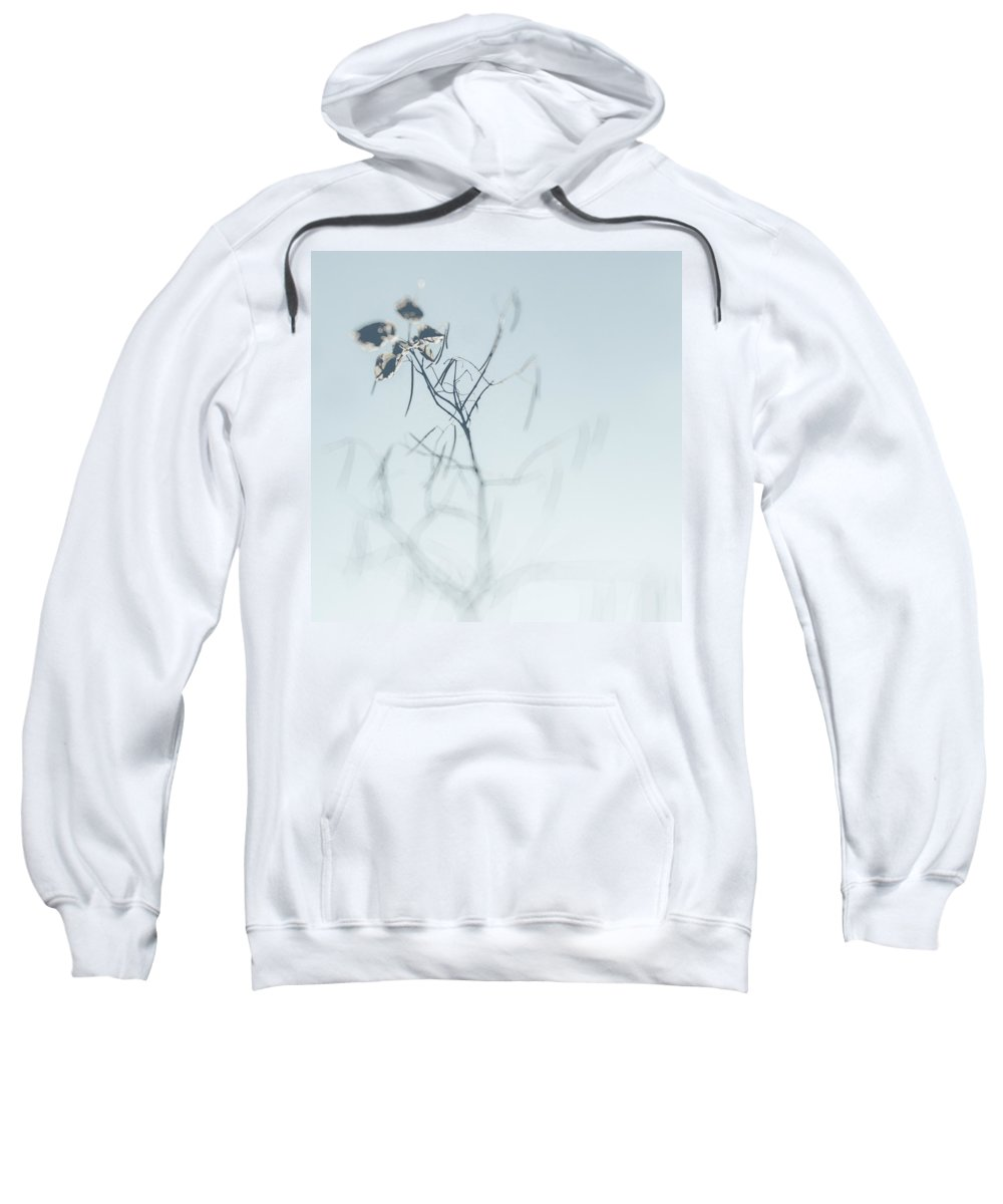 Plant Sweatshirt featuring the photograph Faded Dream by Zapista