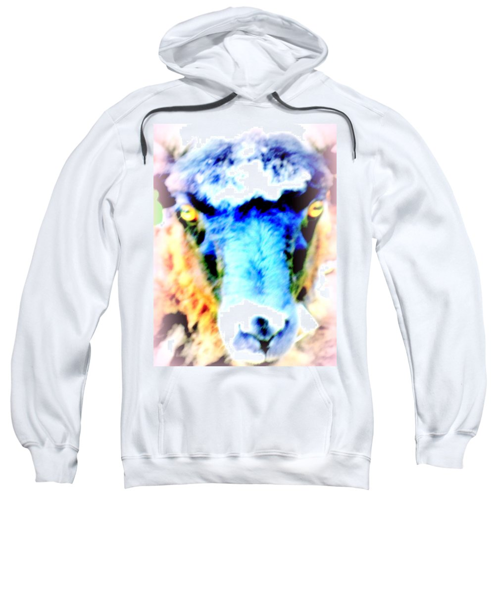 Sheep Sweatshirt featuring the photograph I Have This Terrible Sheep Feeling by Hilde Widerberg