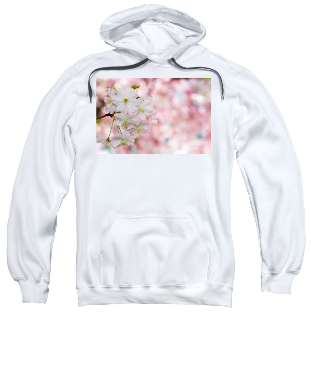 Blossom Sweatshirt featuring the photograph Finest Spring Time by Hannes Cmarits