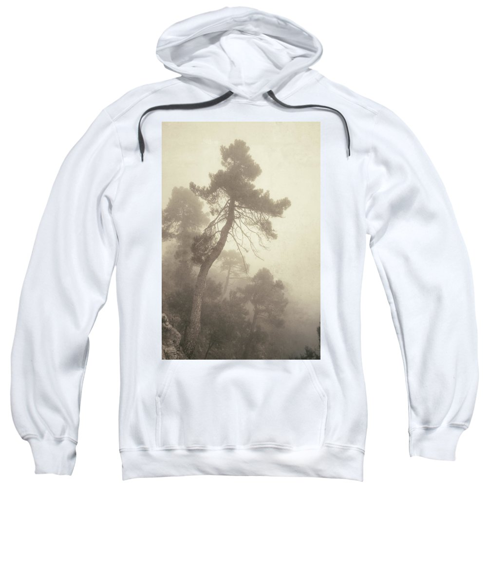 Retro Sweatshirt featuring the photograph Forest Fairy by Guido Montanes Castillo