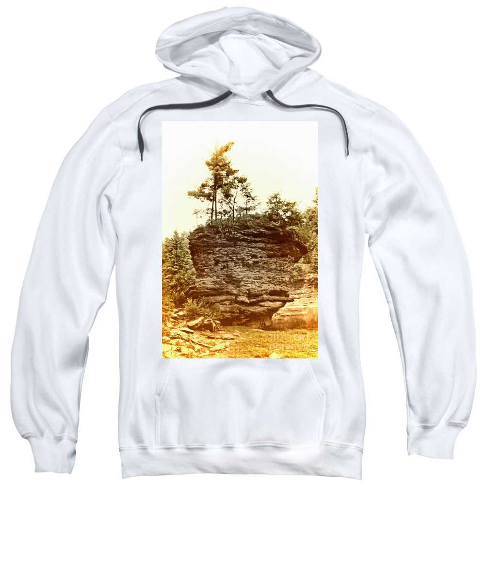 Scenic Tours Sweatshirt featuring the photograph Forest On A Rock by Skip Willits