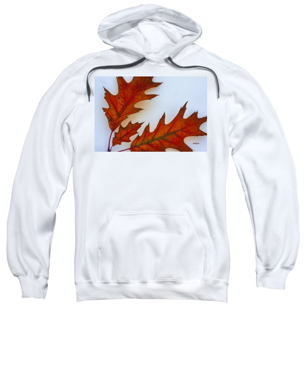 Leaves On Snow Sweatshirt featuring the photograph Fragile Transformation by Bill Sherrell