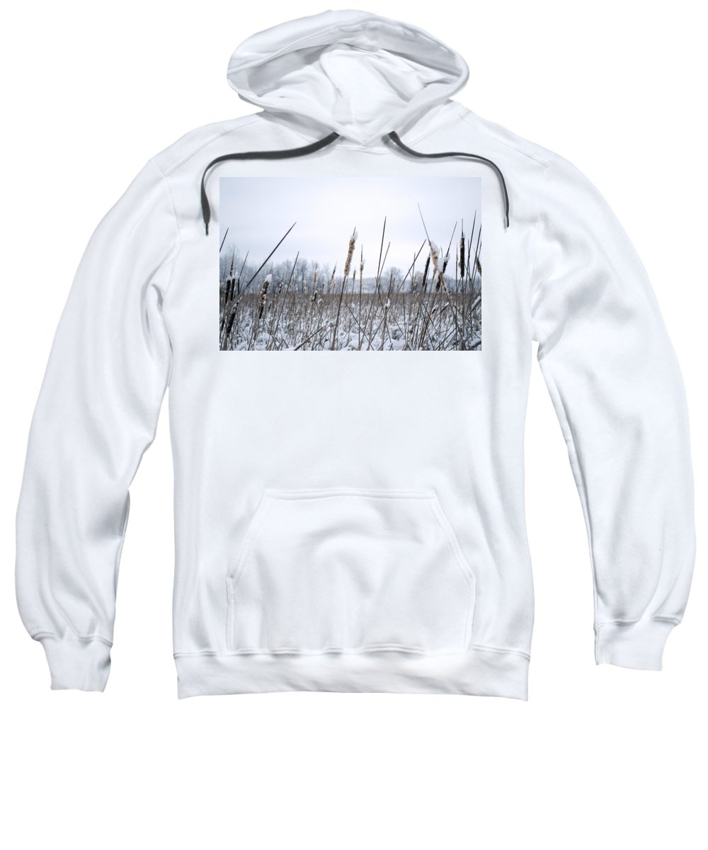 Cattails Sweatshirt featuring the photograph Frosty Cattails by Jim Shackett