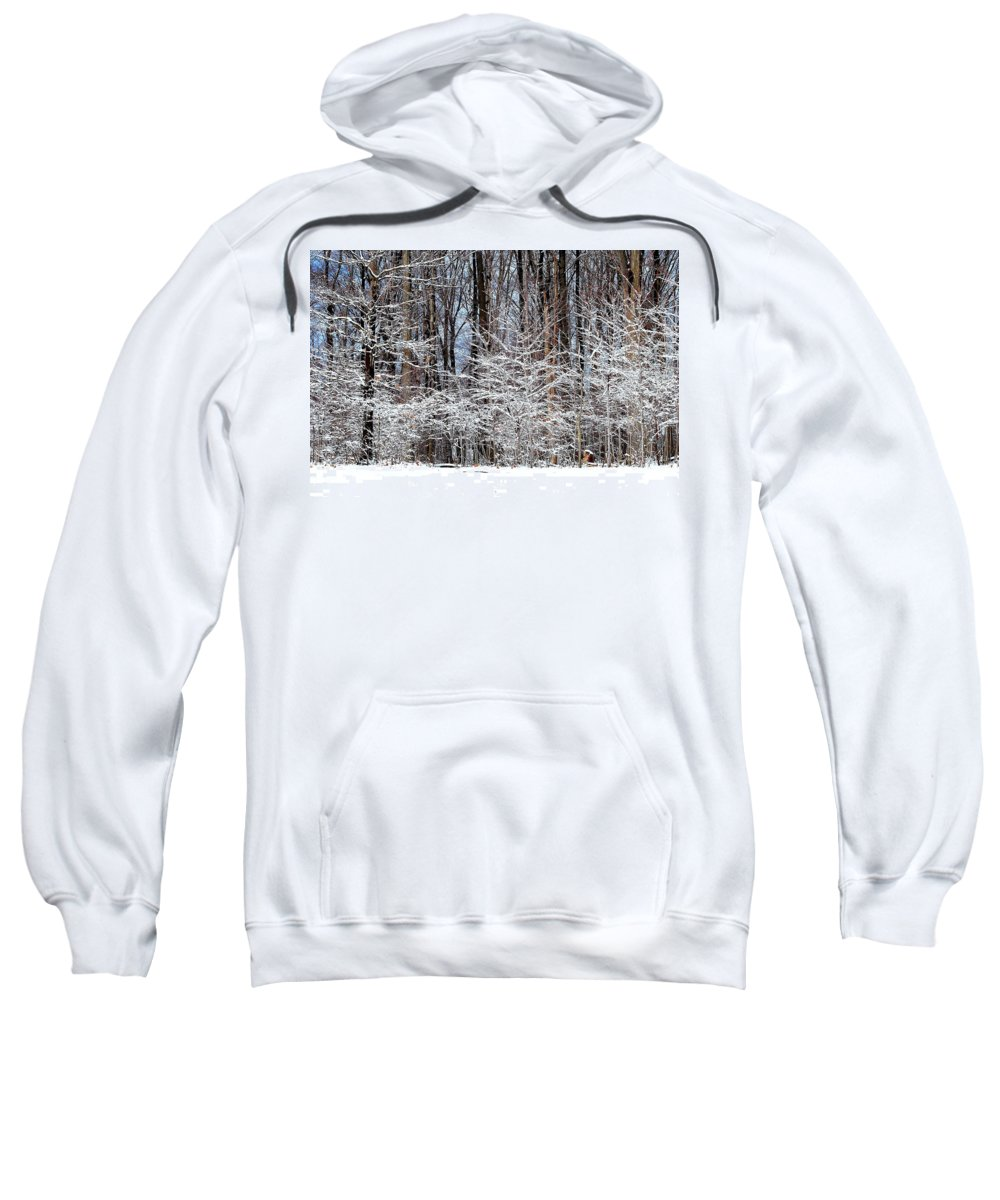 Snow Sweatshirt featuring the photograph Frosty by Frozen in Time Fine Art Photography