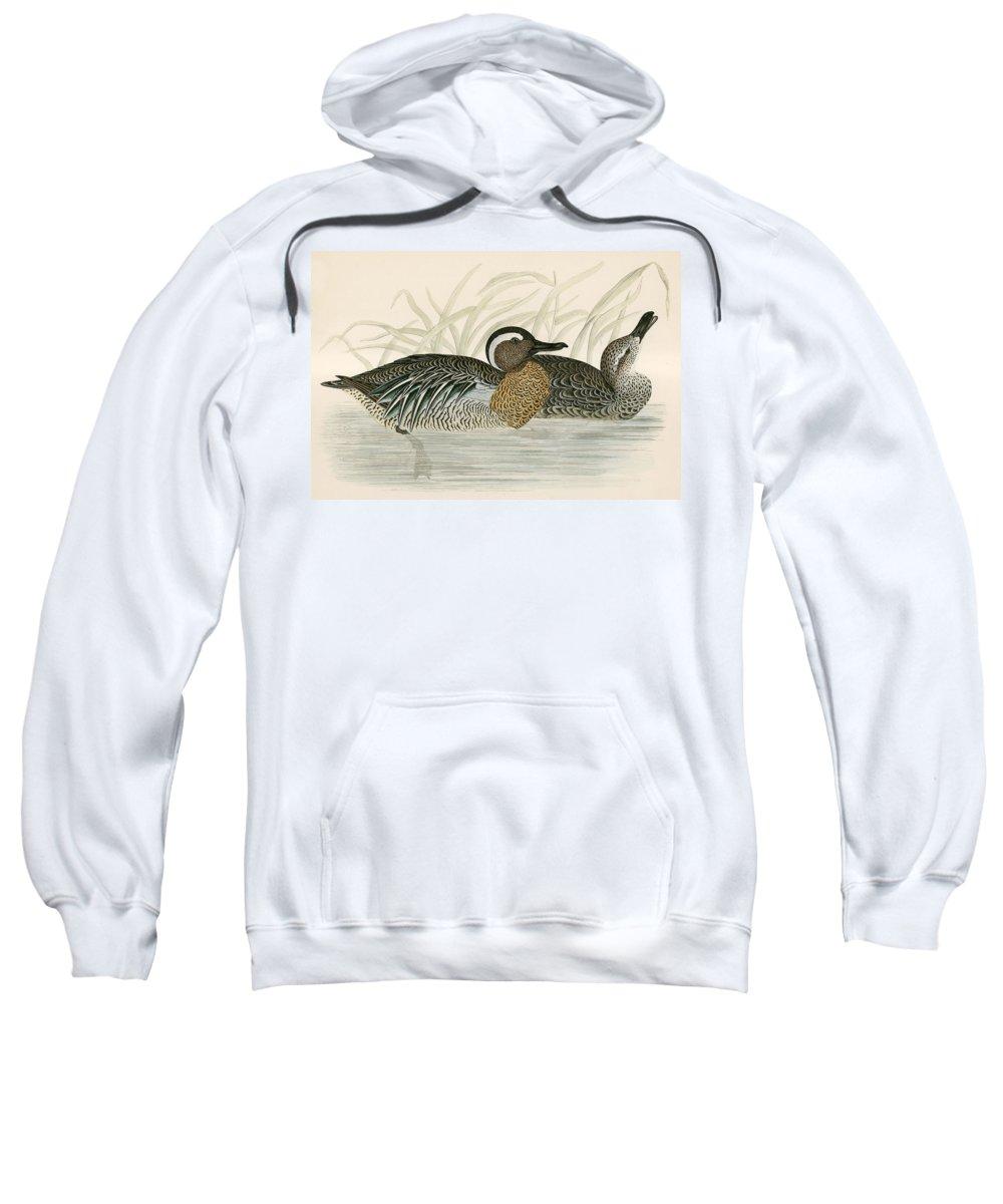 Birds Sweatshirt featuring the photograph Garganey Teal by Beverley R. Morris