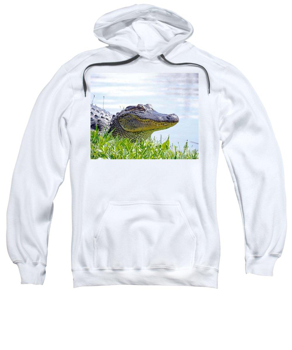 Alligator Sweatshirt featuring the photograph Gator Smile by Lizi Beard-Ward