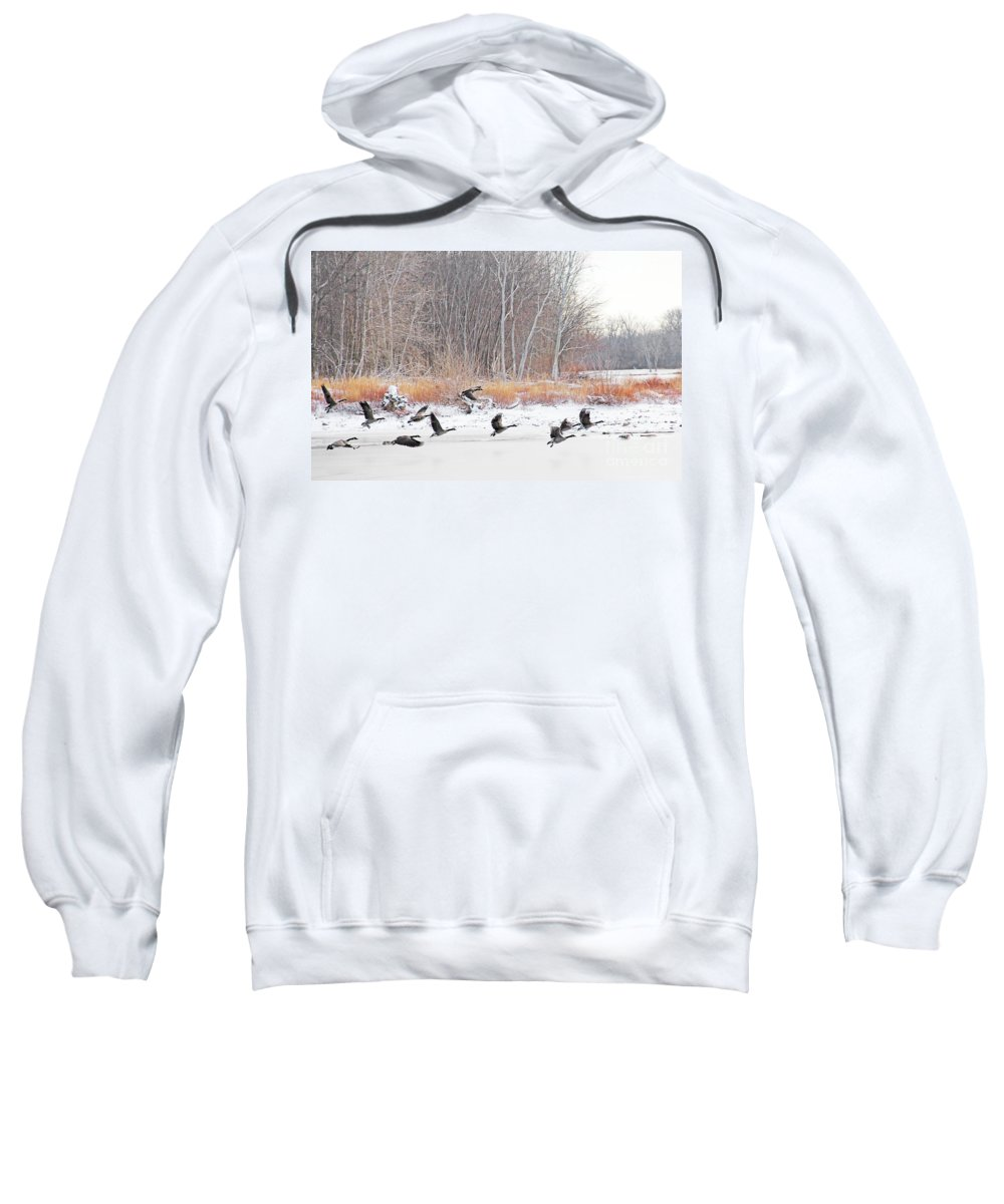 Canadian Geese Sweatshirt featuring the photograph Geese Over Maumee River by Jack Schultz