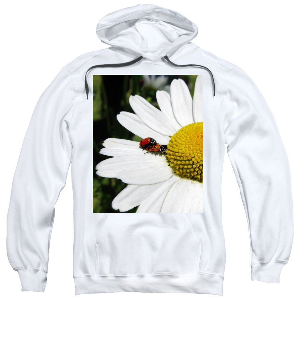 Ladybug Sweatshirt featuring the photograph Getting To Know You by Jennie Breeze