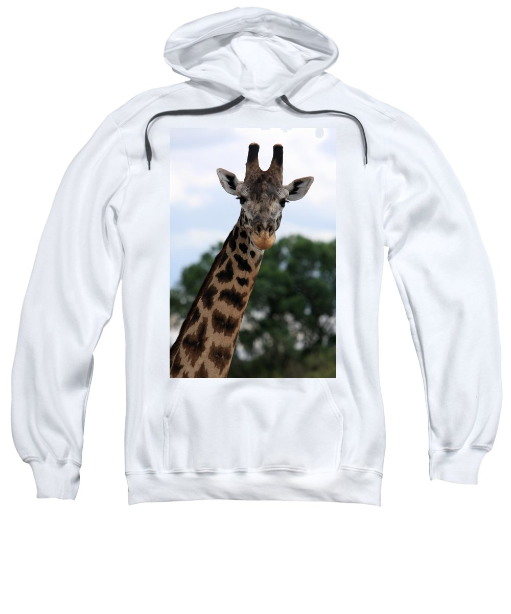 Giraffe Sweatshirt featuring the photograph Giraffe by Aidan Moran