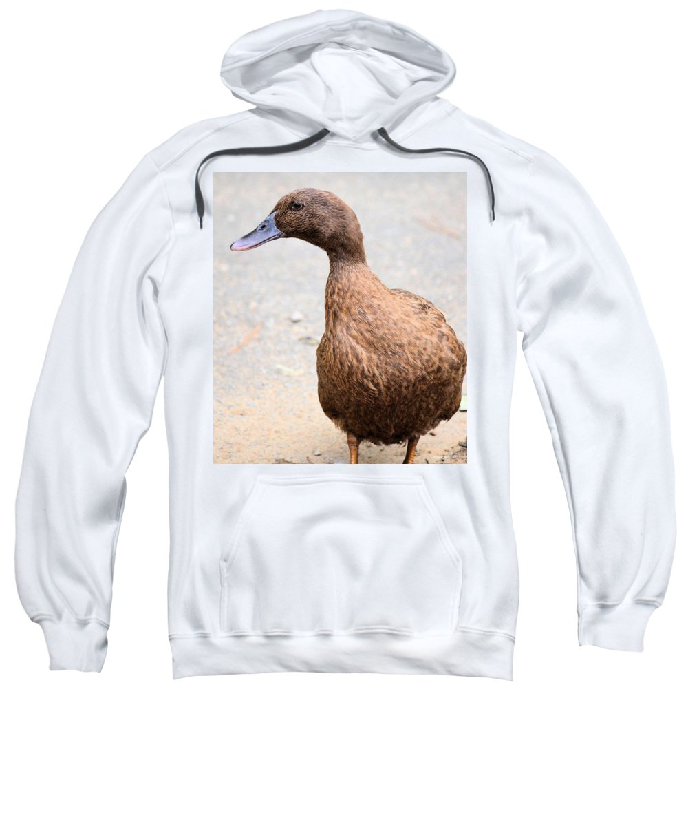Golden Sweatshirt featuring the photograph Golden Brown Feathers by Maria Urso