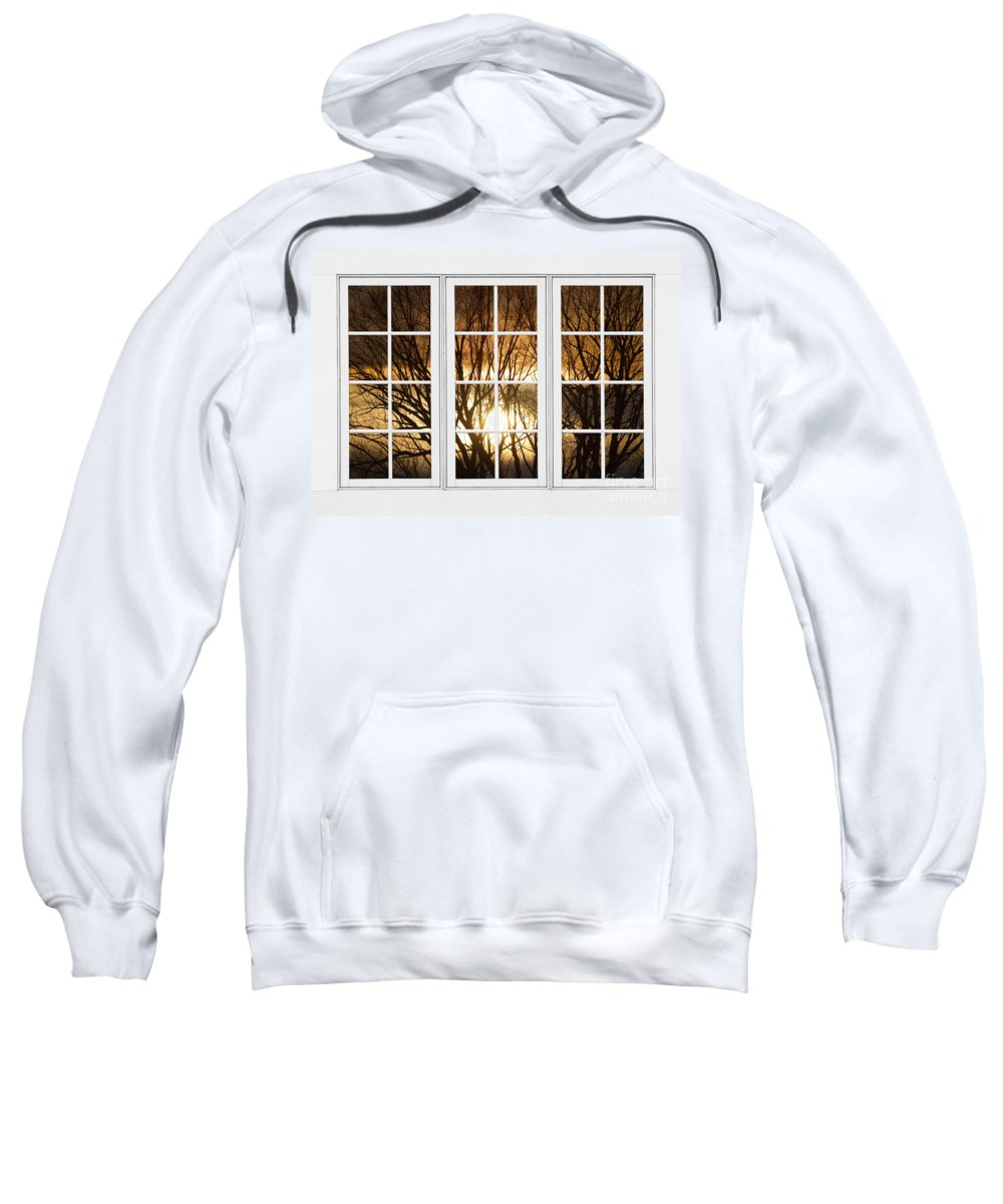 Window Sweatshirt featuring the photograph Golden Sun Silhouetted Tree Branches White Window View by James BO Insogna