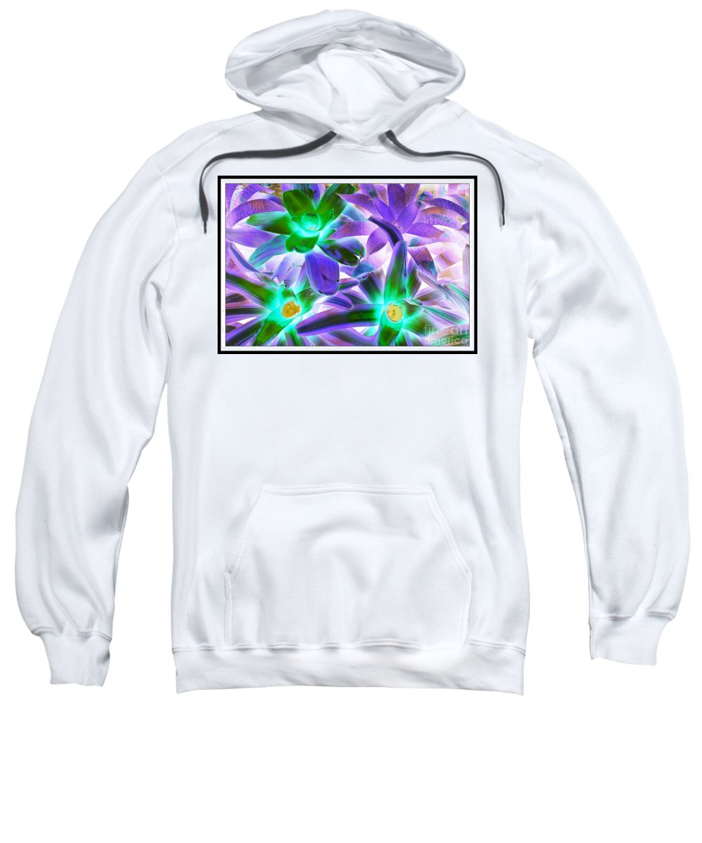 Green And Purple Cactus Plants - Nature - Pop Art - Bold Colors - Sweatshirt featuring the photograph Green And Purple Cactus by Dora Sofia Caputo Photographic Design and Fine Art