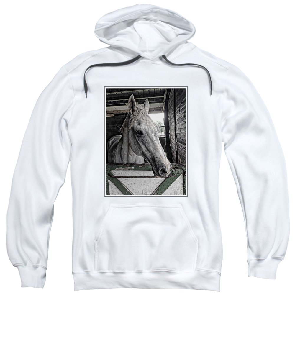Gray Horse Sweatshirt featuring the photograph Harley In The Barn by Alice Gipson