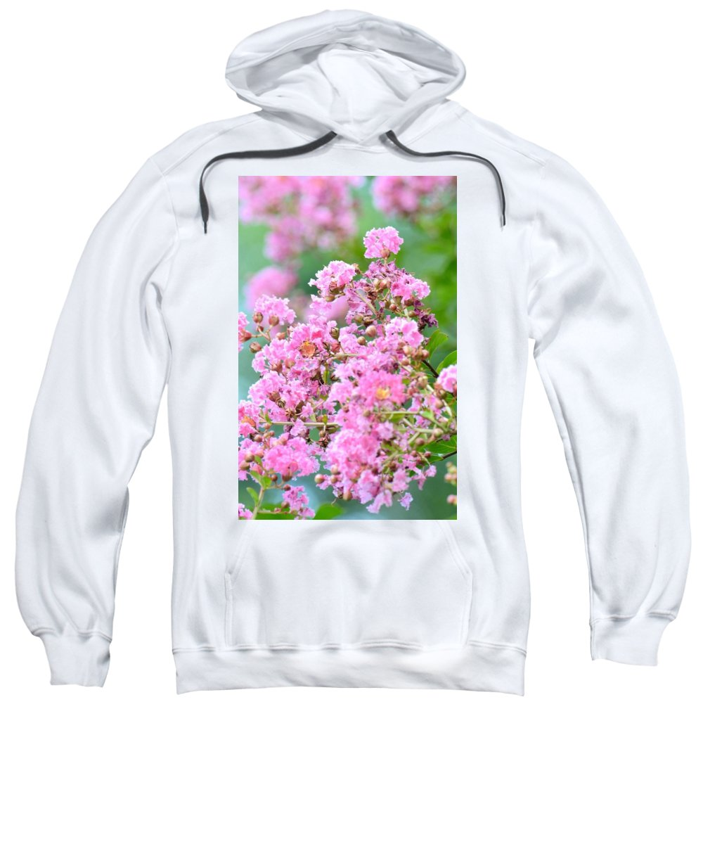 Hazy Pink Crepe Mertles Sweatshirt featuring the photograph Hazy Pink Crepe Mertle by Maria Urso