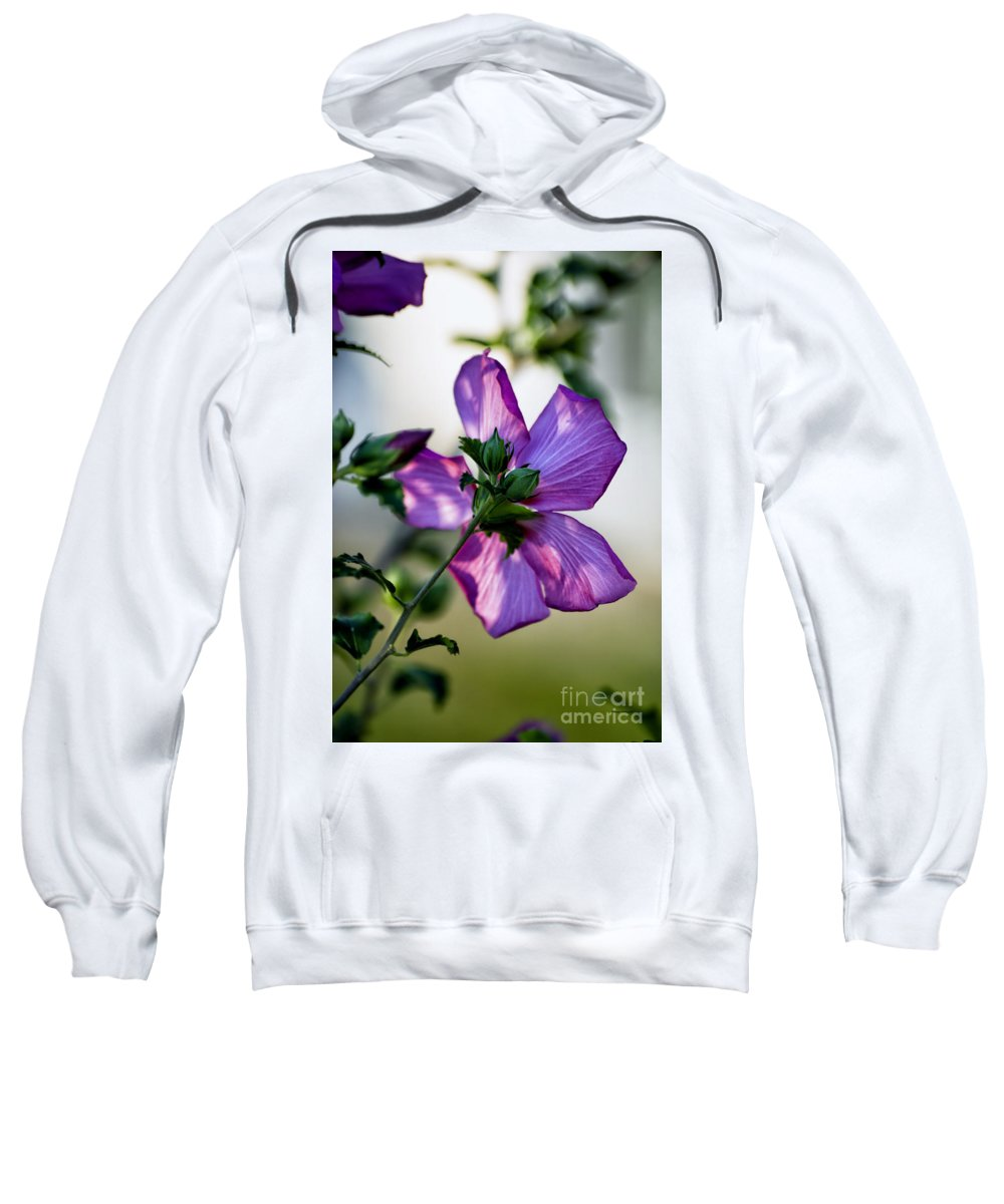 Hibiscus Sweatshirt featuring the photograph Hibiscus 02 by Thomas Woolworth