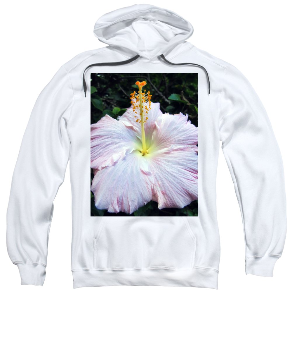 White Sweatshirt featuring the photograph Hibiscus 41 by Dawn Eshelman