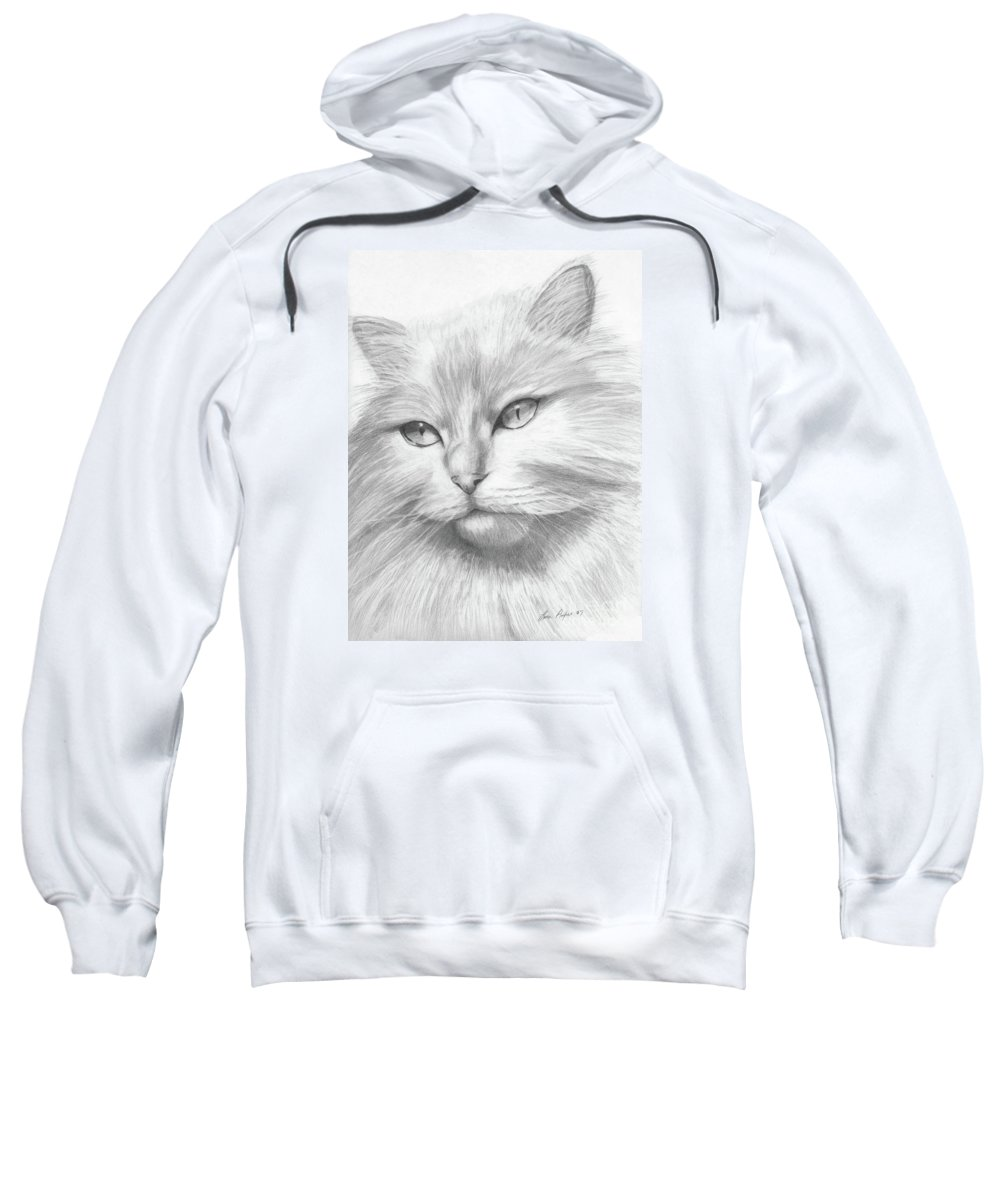 Pencil Sweatshirt featuring the drawing Himalayan Cat by Lena Auxier