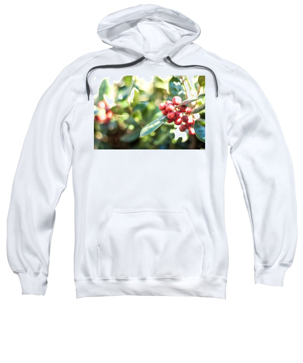 Photograph Sweatshirt featuring the photograph Holly Berries by Nicole Parks