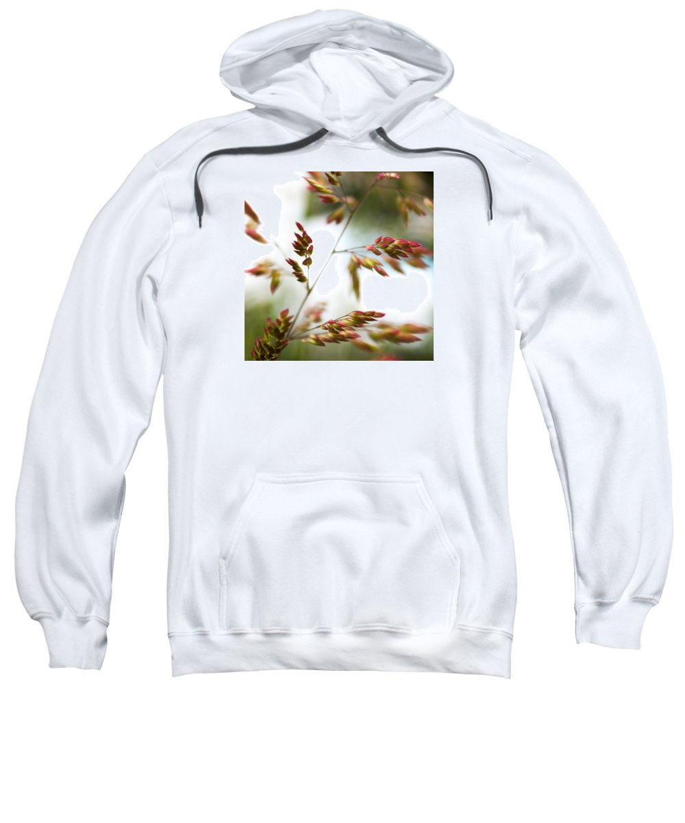 Velvet Grasses Sweatshirt featuring the photograph How Easily They Sway by Richard Pennells
