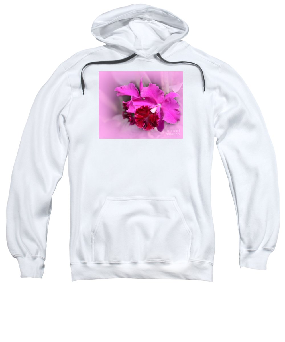 Macro Sweatshirt featuring the photograph In The Pink by Sabrina L Ryan