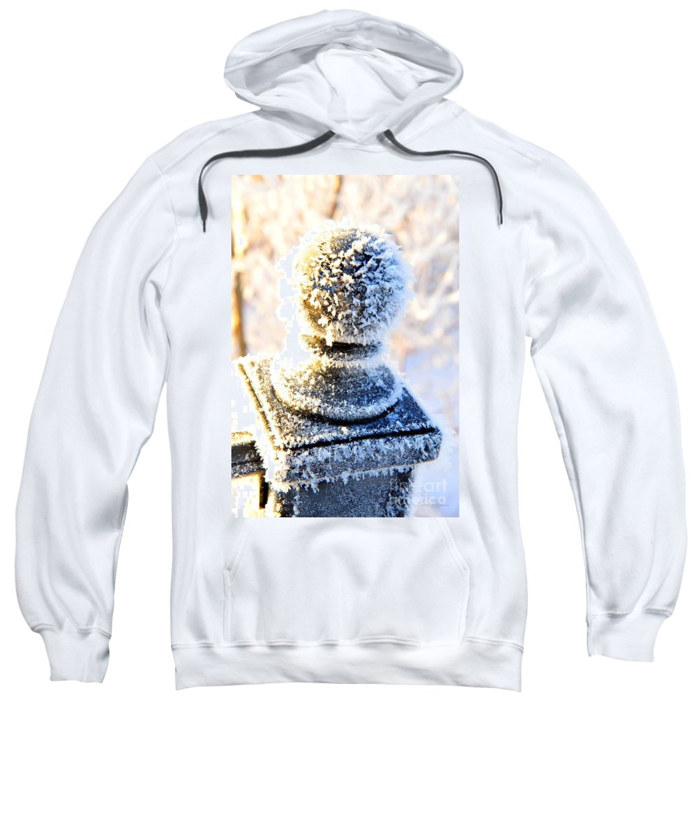 Frost Sweatshirt featuring the photograph It's A Bit Nippy Out by Terri Gostola