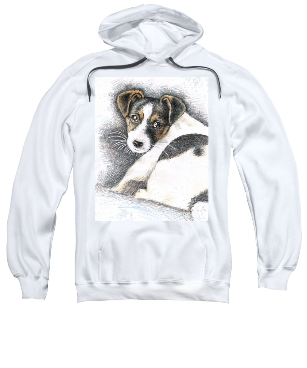 Dog Sweatshirt featuring the drawing Jack Russell Puppy by Nicole Zeug