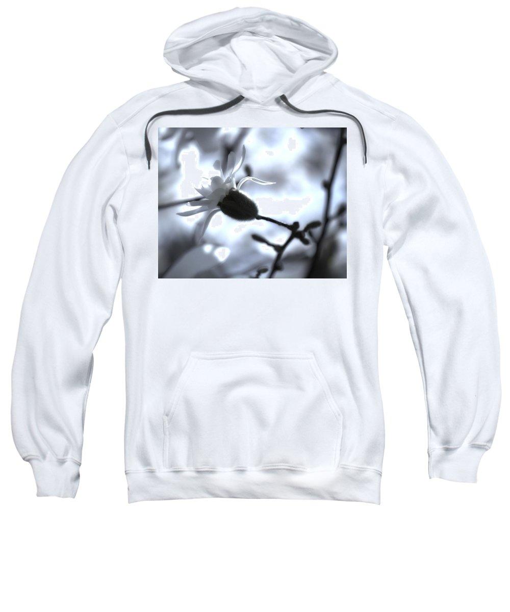 Jasmine Sweatshirt featuring the photograph Jasmine Blossom by John Feiser