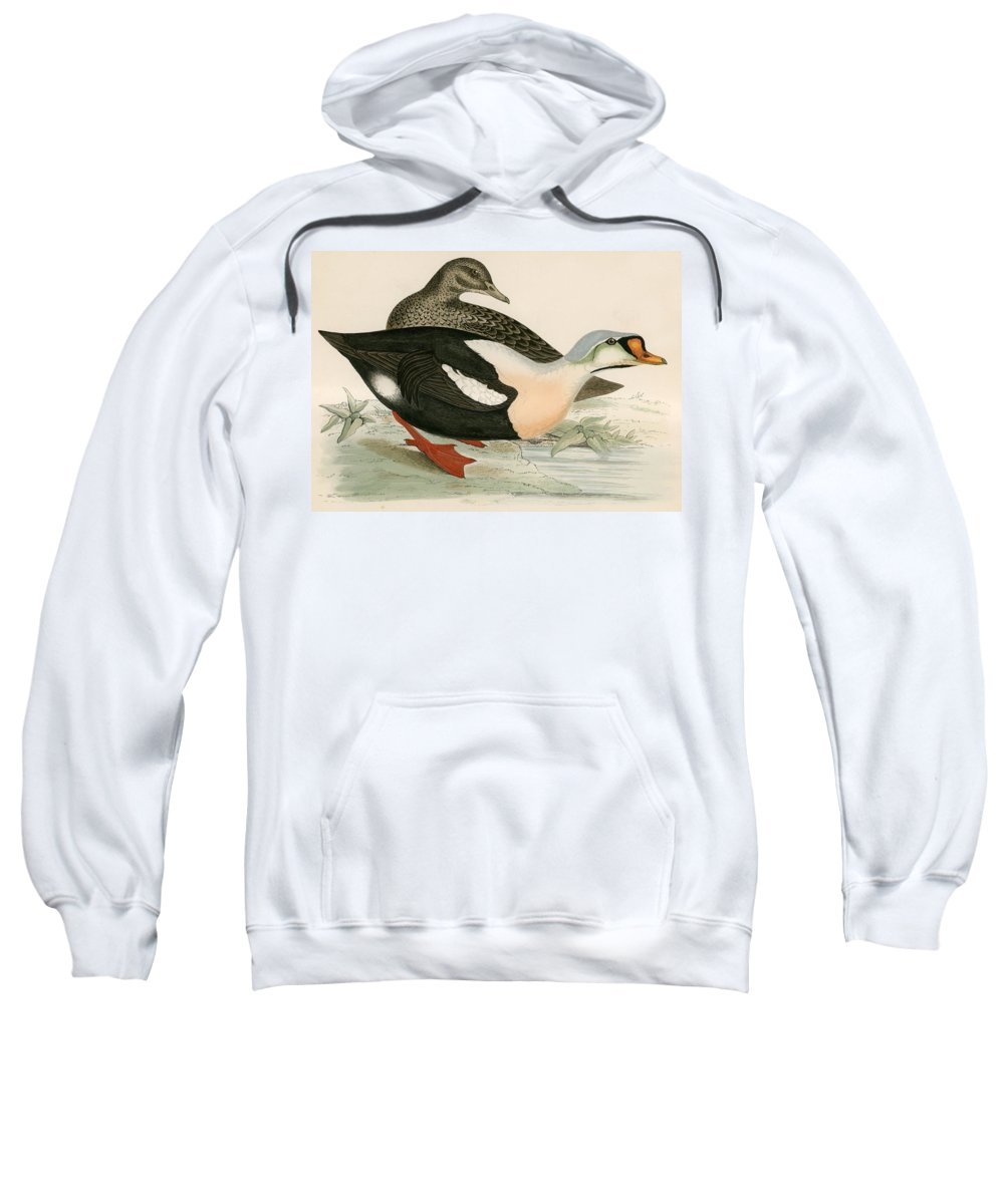 Birds Sweatshirt featuring the photograph King Duck by Beverley R. Morris