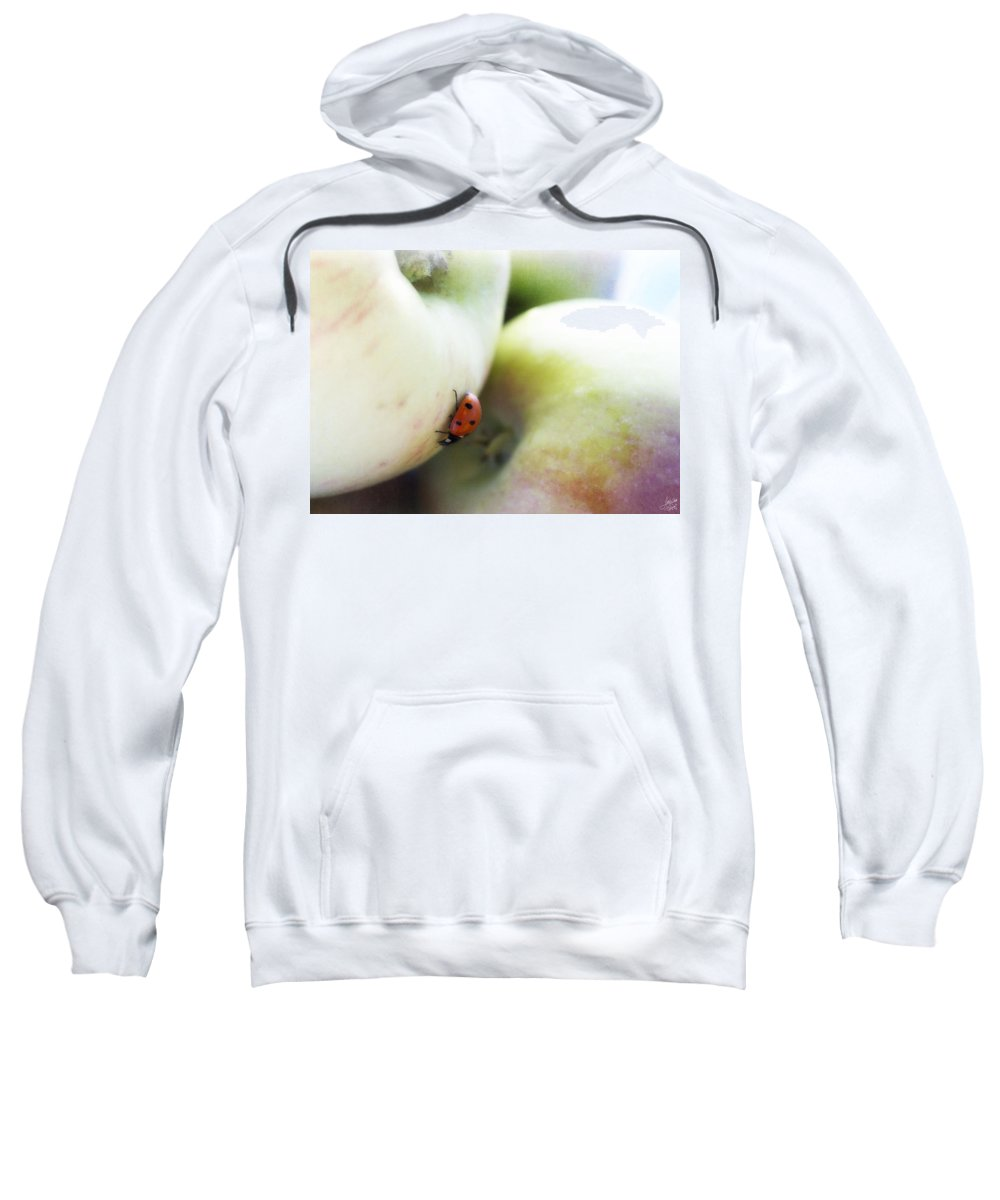 Fruit Sweatshirt featuring the photograph Lady On The Macs by Lisa Knechtel